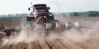 Lançamento do projeto de produção de sementes híbridas